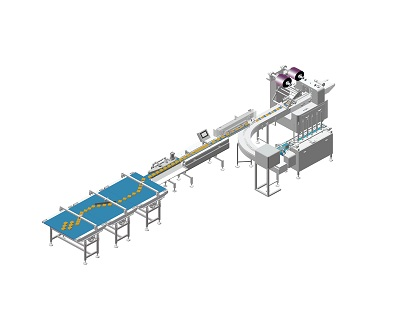 What Affects the Cost of a Food Packing Machine?