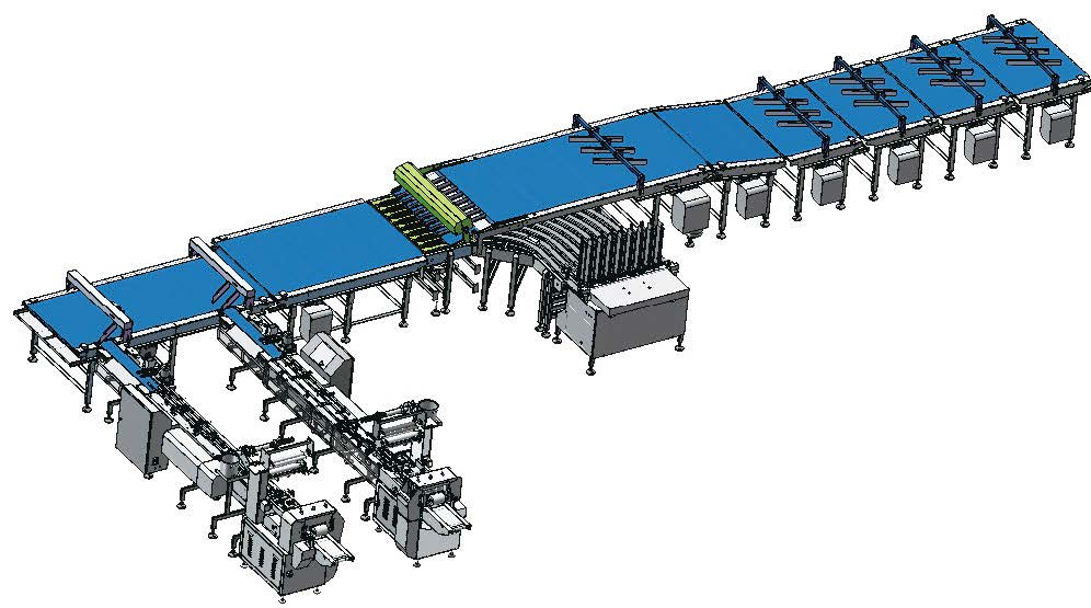 Multi-channel tray loading packaging line for biscuit