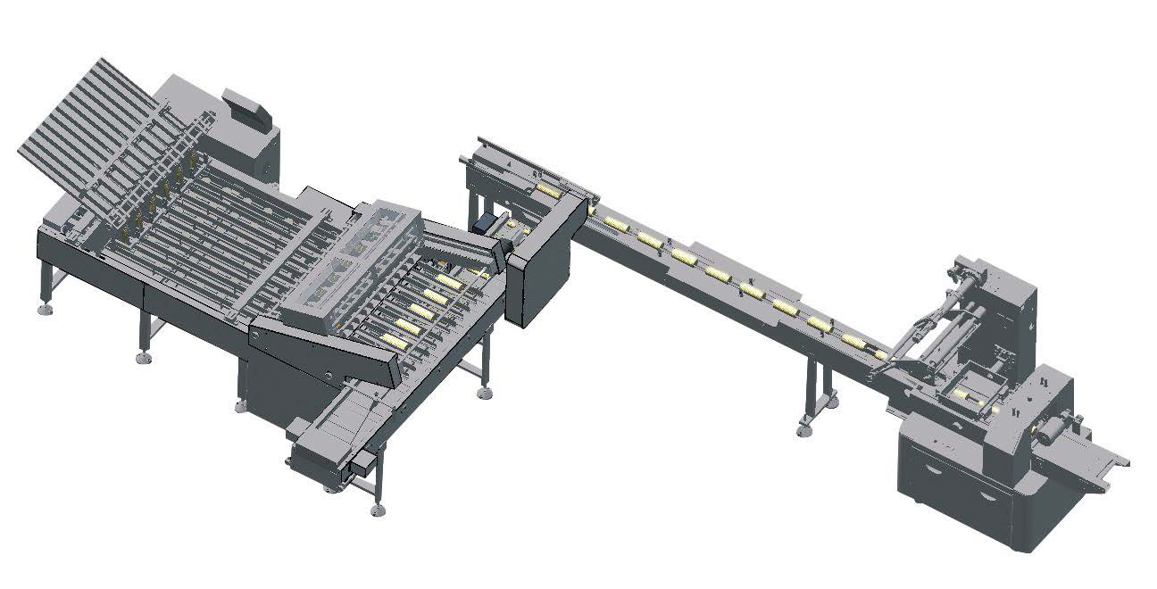 Cookies biscuit counting and packaging system