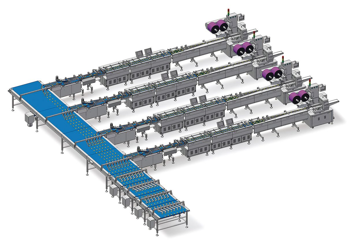 Double channel automatic packaging line for biscuit