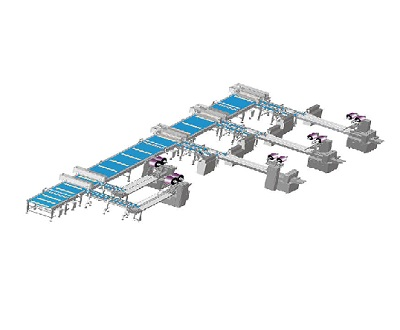 A prologue to automatic adaptable automatic food packaging machines
