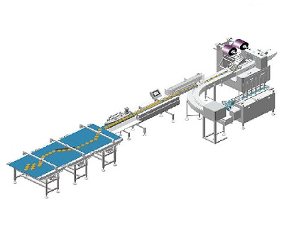 Things That You Should Know Before Buying Automatic Food Packaging Machines
